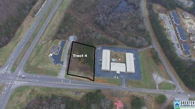 Commercial For Sale: Hwy 77