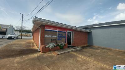 Commercial For Sale: 224 East St N