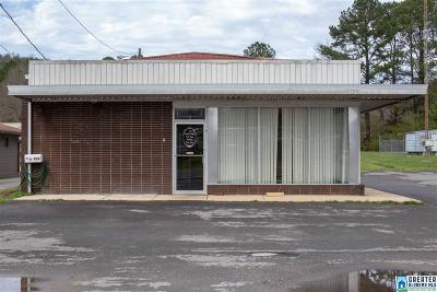Commercial For Sale: 906 2nd Ave E