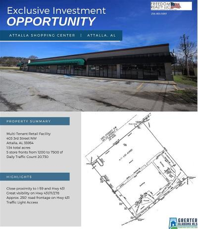 Commercial For Sale: 403 3rd St