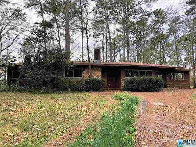 Hoover Single Family Home For Sale: 500 Wood Acres Ln