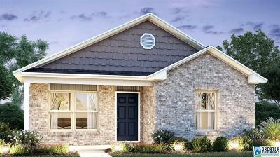 Single Family Home For Sale: 579 Fox Run Cir