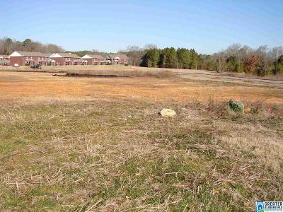 Commercial For Sale: Hwy 119