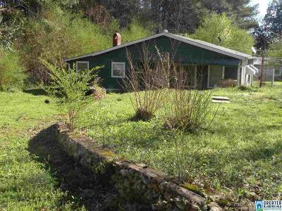 Talladega Single Family Home For Sale: 78 Cromer Ave