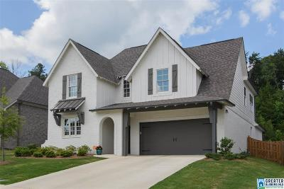 Trussville Single Family Home For Sale: 5938 Mountain View Trc