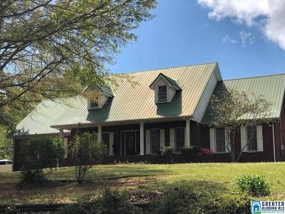 Oxford Single Family Home For Sale: 185 Haynes Ln