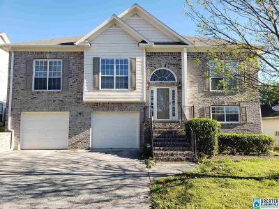 Single Family Home For Sale: 676 Clearview Rd