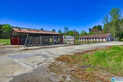 Commercial For Sale: 7910 S Hwy 69 S