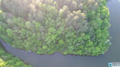 Randolph County, Clay County Residential Lots & Land For Sale: Co Rd 2402