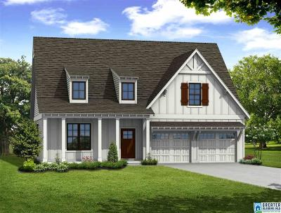 Trussville Single Family Home For Sale: 4699 Trussville Clay Rd