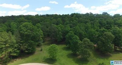 Helena Residential Lots & Land For Sale: Lot 1 Brookview Ln