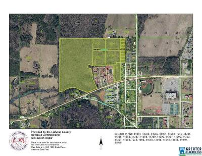 Residential Lots & Land For Sale: Hwy 204