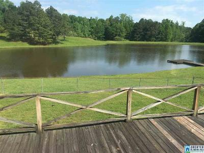 Clay County Single Family Home For Sale: 491 Dairy Barn Rd