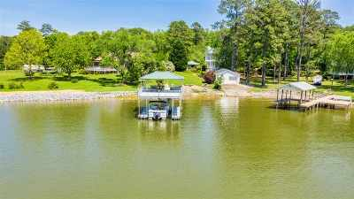 Pell City Single Family Home For Sale: 149 Valley View Cir