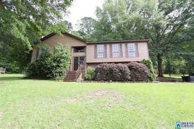 Birmingham Single Family Home For Sale: 5545 Parkside Dr