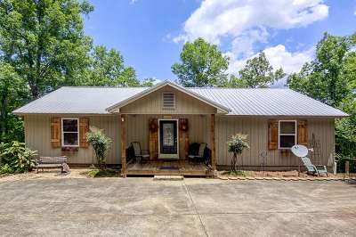 Randolph County, Clay County Single Family Home For Sale: 107 Harbor Point Ln