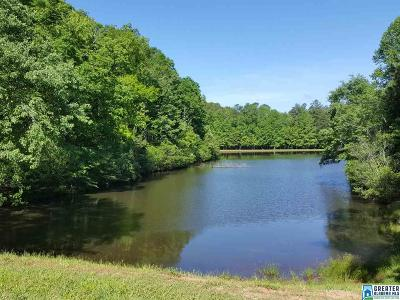 Clay County, Cleburne County, Randolph County Single Family Home For Sale: 3066 Co Rd 88