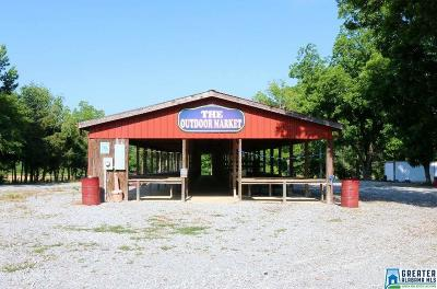 Commercial For Sale: 808 Logan Rd