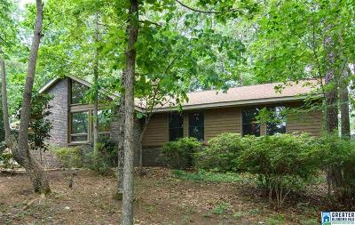 Birmingham Single Family Home For Sale: 2924 Selkirk Cir