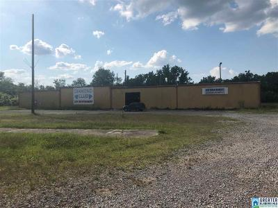 Commercial For Sale: 4520 Bessemer Super Hwy