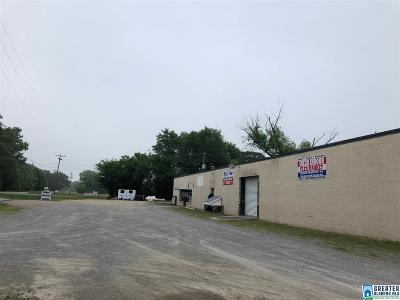 Commercial For Sale: 43100 Hwy 75