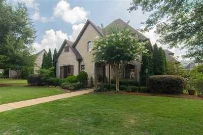 Greystone Single Family Home For Sale: 315 Woodward Ct