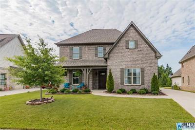 Chelsea Single Family Home For Sale: 1017 Evan Cir