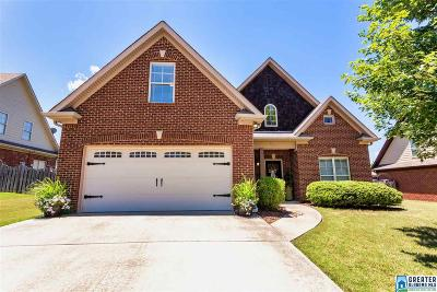 Single Family Home For Sale: 434 River Oaks Ln