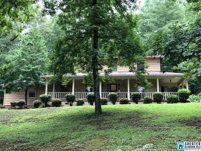 Jacksonville Single Family Home For Sale: 260 Danview Rd