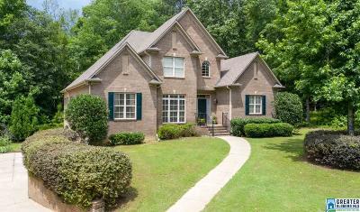 Chelsea Single Family Home For Sale: 418 Hidden Ridge