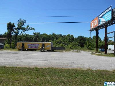 Commercial For Sale: 16195 Hwy 280 E