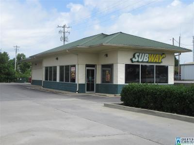 Commercial For Sale: 520 Hwy 69 S