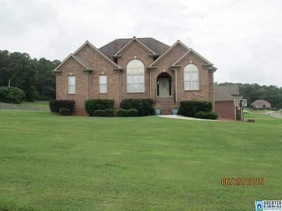 Single Family Home For Sale: 63 Village Trace Dr