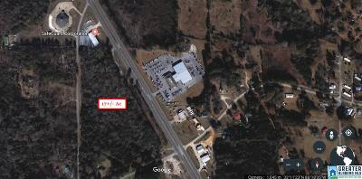 Residential Lots & Land For Sale: 17 Hwy 280