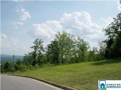 Residential Lots & Land For Sale: Eagle Pass Way