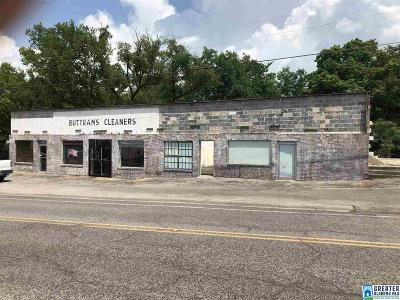 Commercial For Sale: 4229 Main St