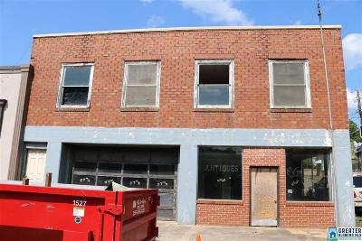 Commercial For Sale: 29 Main St