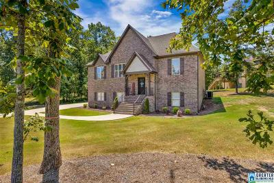 McCalla Single Family Home For Sale: 7791 Indian Gap Trl