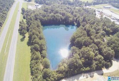 Commercial For Sale: 136 Cross Road Dr