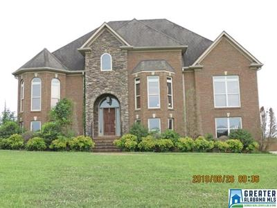 Single Family Home For Sale: 188a Plum Creek Dr