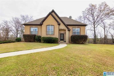 Single Family Home For Sale: 2034 Chelsea Ridge Dr