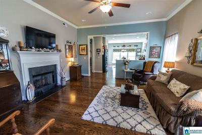 Chelsea Single Family Home For Sale: 2040 Springfield Dr