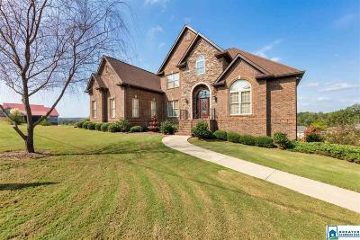 Bessemer Single Family Home For Sale: 120 Concord Highland Dr