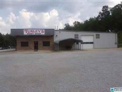 Commercial For Sale: 5151 Saks Rd