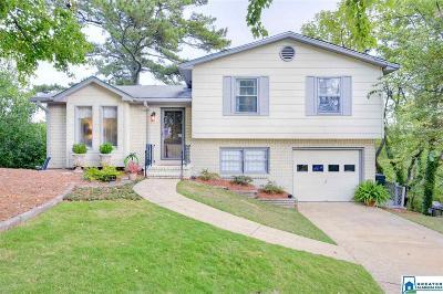 Birmingham Single Family Home For Sale: 1208 Krin Ave