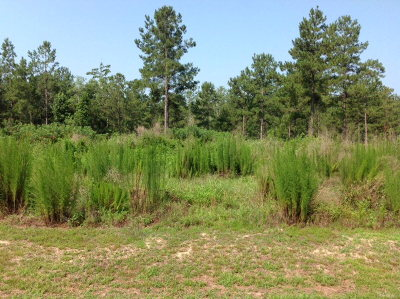 Andalusia AL Residential Lots & Land For Sale: $29,900