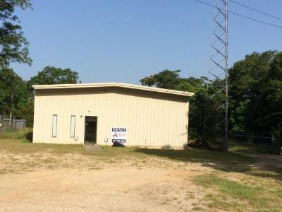 Andalusia Commercial For Sale: 23193 Al Hwy 55 S