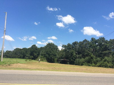 Commercial Lots & Land For Sale: Us Hwy 84 W