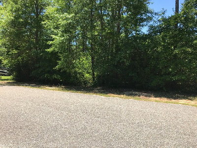 Andalusia Residential Lots & Land For Sale: Lot 29 Lake Courtney Ln