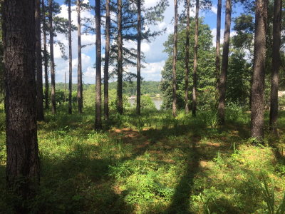 Andalusia AL Residential Lots & Land For Sale: $22,000